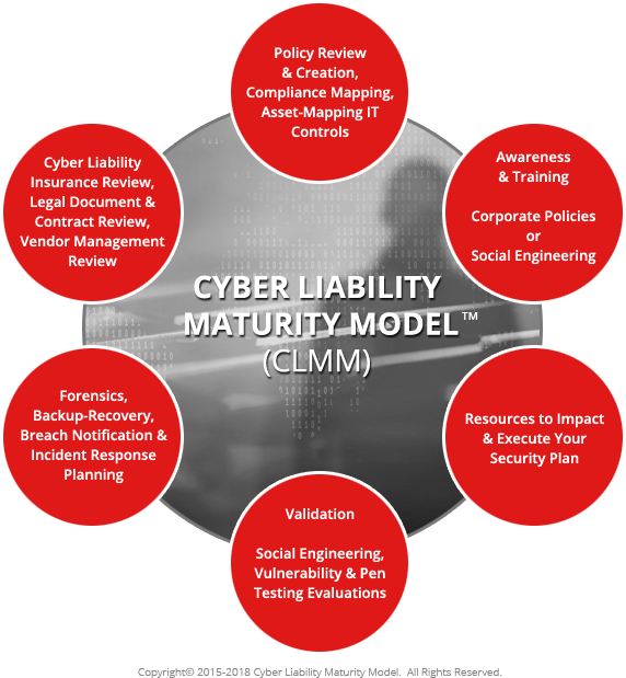 Cyber Liability Maturity Model